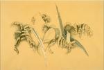Lillies and Iris
